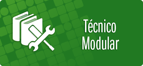 Técnicos Modulares