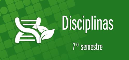 Disciplinas do 7o semestre